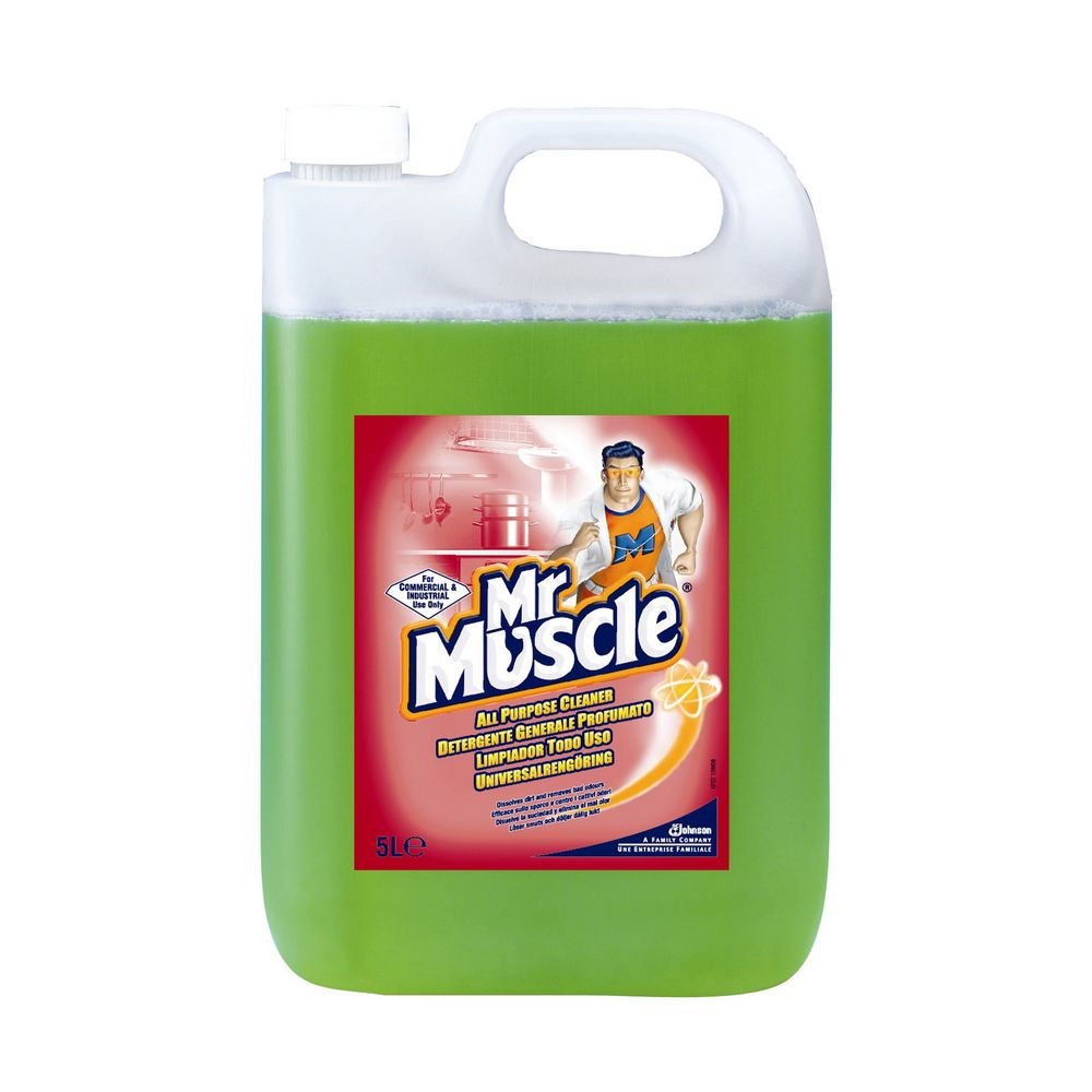 MR MUSCLE ALL PURPOSE CLEANER